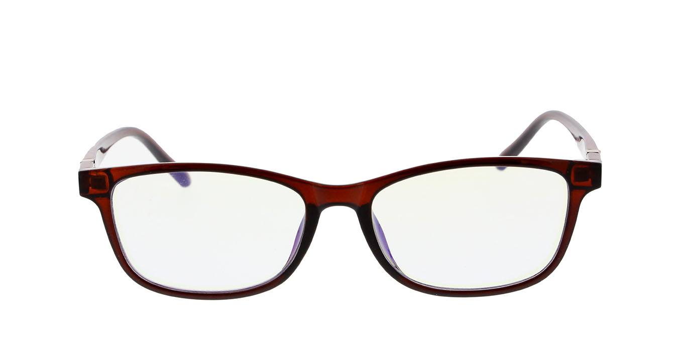 READING GLASSES S039 BROWN +1.00 BLUE LENSES